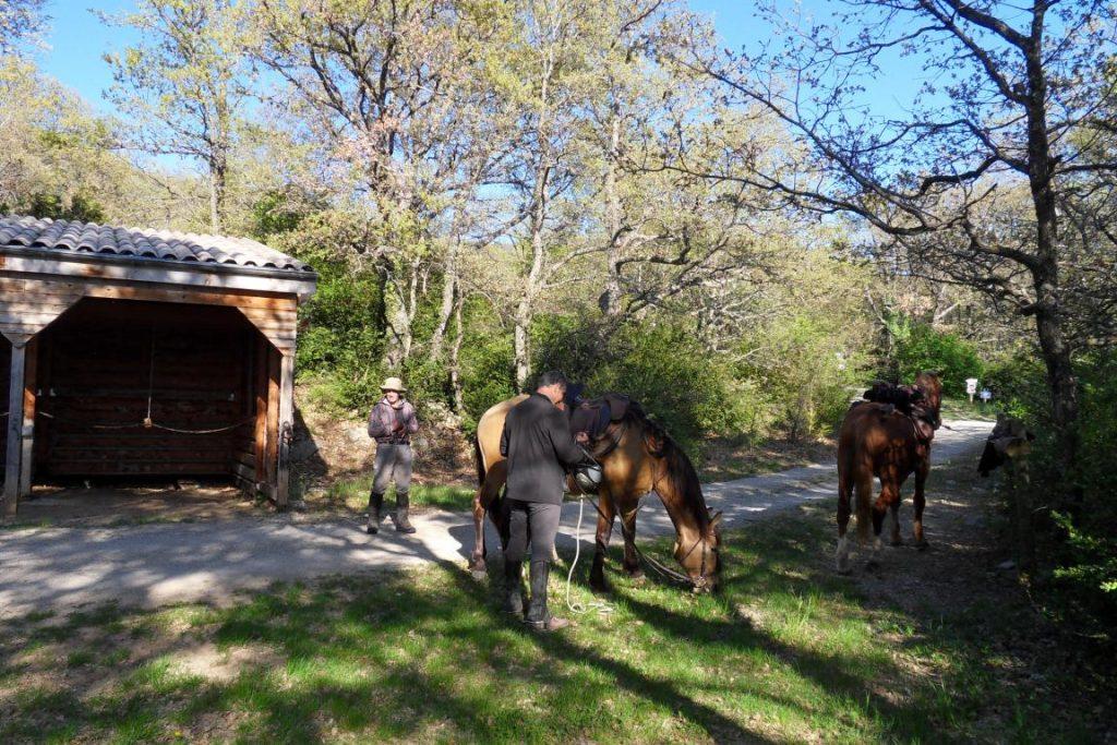 Espace d'accueil des cavaliers avec barres d'attaches